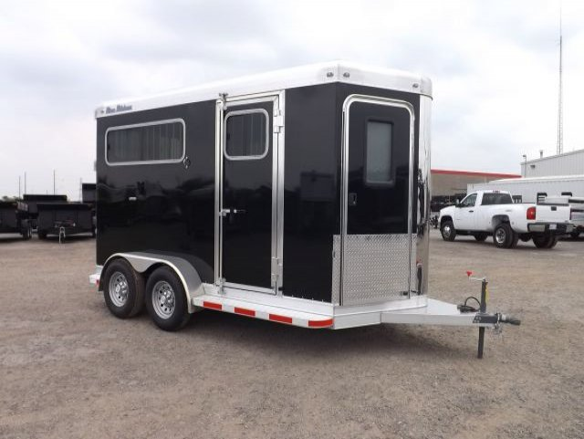 black blue ribbon 2 horse bumper pull trailer curbside front view