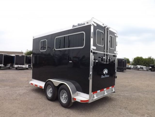 black blue ribbon 2 horse bumper pull trailer roadside rear view